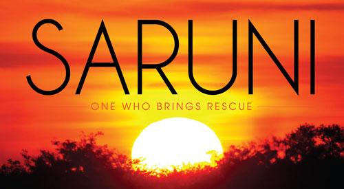 Saruni International